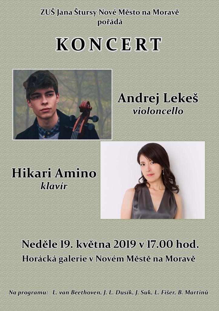 Pozvánka na koncert Andeje Lekeše